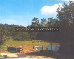 Freehold Residential Land